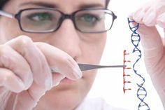 Will Genetic Engineering Change Humanity?