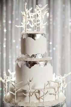 The perfect cake for a winter wedding!
