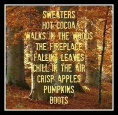 Fall is my favorite time of the year