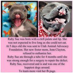Ruby Sue