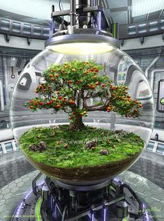 Could do this with a bonsai tree Mini Terrarium, Terrarium Scene, Terrarium Plants, Glass Terrarium, Bonsai Plants, Fairy Terrarium, Ideas Florero, Garden Art, Garden Design