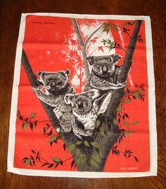 Vintage koala tea towel by Fox & Thomas Koala Illustration, Protected Species, Animal Welfare, Starfish, Tea Towels, Habitats, Squirrels, Fabric, Fox