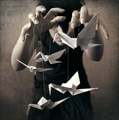 Paper crane photography - Something about this is beautiful and scary at the same time