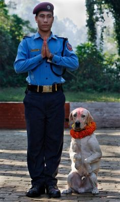 There Is An Annual Festival In Nepal That Celebrates Dogs For Being Our Loyal Friends