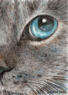 Cat art print - cat drawing art print --eye talk of a grey cat lover gift unique card artwork - Художники - Realistic Eye Drawing, Cat Drawing, Drawing Ideas, Love Drawings, Animal Drawings, Cat Art Print, Art Original, Reproduction, Grey Cats