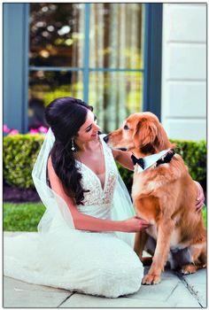 how to make a dog wedding dress Dog Wedding Attire, Dog Wedding Dress, Elegant Wedding Dress, Best Wedding Dresses, Wedding Pics, Dream Wedding, Wedding Ceremony, Reception, Wedding Bells