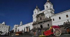 Ven y conoce las flores mas bellas del #Ecuador #Quito www.hotelpatioandaluz.com