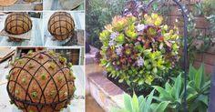 Mi vam donosimo ideju o DIY (uradi sam) lopta od čuvarkuća -koja će zaseniti svakoga ko bude prišao vašem vrtu! #mojrucnirad #diyidea #diycraft #diy