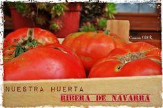 Los Tomates de Nuestra Huerta; Ribera de Navarra