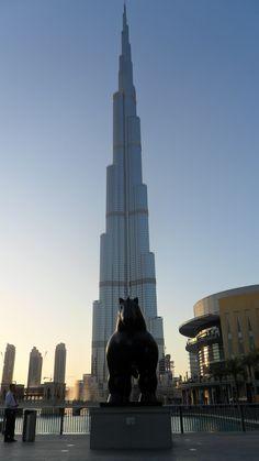 Dubai #dubai #travelling #shopping