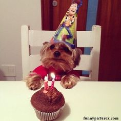 haha omg so cute! I need a pic like this w/tater..good thing his bday is coming up!
