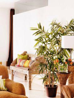 Jurnal de design interior - Amenajări interioare : Amenajare apartament 2 camere - 70 m²