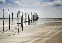 The tiny Dutch island Vlieland has the biggest 'desert' of Europe!