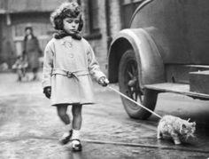 Кошки из прошлого (43 фото)