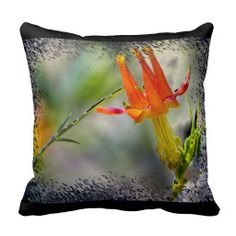 Crimson Columbine Black edge Throw Pillow from Florals by Fred #zazzle #gift #photogift