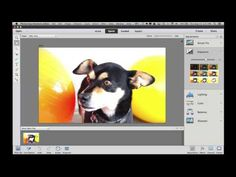 Get Started with Photoshop Elements 13 - YouTube