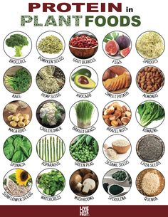 Plant Protein: Your Guide To 24 Protein-Packed Plant Foods! meat 24 Protein-Packed Plant Foods That Can Substitute for Meat! Healthy Life, Healthy Snacks, Healthy Eating, Healthy Recipes, Eating Vegan, High Protein Recipes, Plant Based Protein, Plant Based Diet, Food Facts
