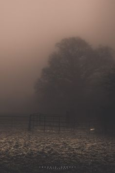 'Darkness in Fog on Farmland' By Freddie Ardley Photography