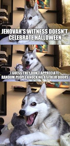 Bad Pun Dog | JEHOVAH'S WITNESS DOESN'T CELEBRATE HALLOWEEN I GUESS THEY DON'T APPRECIATE RANDOM PEOPLE KNOCKING AT THEIR DOORS | image tagged in memes,bad pun dog | made w/ Imgflip meme maker