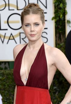 Amy Adam's hair at the golden globes 2014. Four plaits into a bun. http://www.hotportsmouthescorts.co.uk/