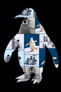 Yeah. We love penguins too.   See more cute animal collages at https://www.collage.com