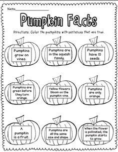 Sarah's First Grade Snippets: Pumpkin Facts