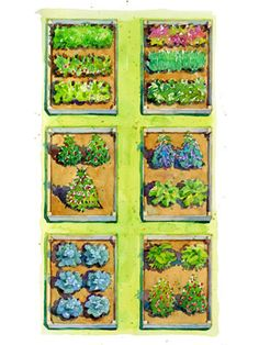 Planting Plans Inspired by the White House Kitchen Garden Raised Garden Bed Plans, Building A Raised Garden, Raised Beds, Home Design, Design Patio, Garden Design, Modern Design, Landscaping Design, Yard Landscaping