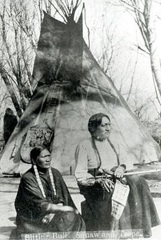 When I was a boy, the Sioux owned the world. The sun rose and set in their land; they sent ten thousand men into battle.  Where are the warriors today? Who slew them? Where are our lands? Who owns them? --Sitting Bull