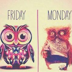 Happy Monday Dolls!  #JaeLuxeShoetique #shoetique #motivationmonday #Monday #heels