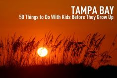 50 Things to Do with Your Kids in the Tampa Bay Area Before They Grow Up...Gosh I miss Florida. Someday I will take me girls there. Show them where I grew up.