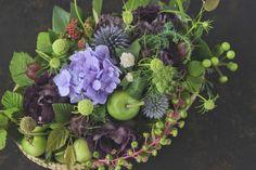 Staff blog: 6月の花たち