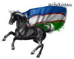 Horse Hetalia: Uzbekistan by Moon-illusion on deviantART