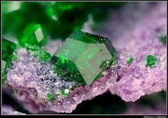 Amazing color Uvarovite and Amesite from Ural, Russia.