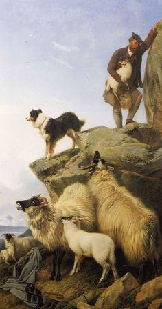 CLASSIC SCOTTISH SHEPHERD PAINTING | These are by Richard Ansdell. Not sure of the titles or dates of these ...