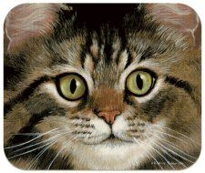 Ah Brown Tabby Cat Mousepad Cat Merchandise, Cat Cushion, Cat Mouse, Cat Gifts, Tabby Cats, Painting, Animals, Mousepad, Cushions