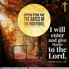 Open for me the gates of the righteous; I will enter and give thanks to the Lord. Psalms 118:19 NIV