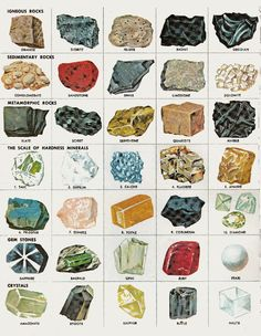 rocks and minerals.gif (755×973)