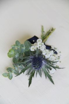 winter flower boutonnieres | simply elegant and slightly winter Boutonniere of a Thistle with ...