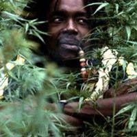 Stream Power Tosh(instrumental reggae) by cannejah reggae from desktop or your mobile device Rastafarian Culture, Peter Tosh, Reggae Artists, The Wailers, Reggae Music, Ganja, The Wiz, Bob Marley, Good Music