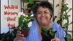 Whitfill Nursery Plant Haul | Houseplant Haul 2021 Plant Nursery, Houseplant, Balcony Garden, Container Gardening, Sassy, The Creator, Succulents, Plants, Vivarium