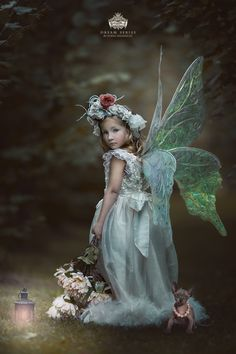 Photo Baby Faery by Nikki Harrison on Fairy Pictures, Angel Pictures, Fairy Photography, Children Photography, Fairy Photoshoot, Fairies Photos, Baby Fairy, Fairy Dress, Beautiful Fairies