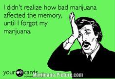 funny marijuana pictures /forgot_my_pot.jpg