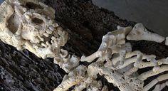 フィリピン生まれ、ニュージャージー州を拠点に活動するアーティストGregory Haliliさんは骸骨をモチーフにした作品を多く手がけています。 中でも多くのサンゴ礁を素材として作られた最新作品が素晴らしく、まるで本物の骨のように成形され、並べられた様は骨格標本さながらのリアルさがあります。金属の棒で固定されており、流木の上に浮いているように設置されています。 この作品以外にも白蝶貝、黒蝶貝などの貝殻に頭蓋骨の側面を彫刻刀と油絵の具で描く作品「Memento」シリーズがとても有名です。貝から浮き出しているよう見える頭蓋骨は異様なほどリアルで、貝の質感を巧みに利用しながら描いています。 以前ご紹介した頭蓋骨をモチーフにした現代アート作品のまとめ記事も関連としてご覧下さい。          Working on found natural corals. Photo by Christina DyGregory Raymond Haliliさんの投稿2015年8月20日          Contemplating this work all night. The…