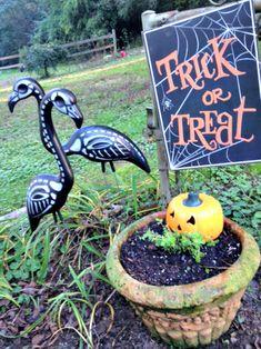 Spooktacular Garden Décor www.Gardenchick.com