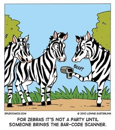 Image result for zebra humor,cartoons