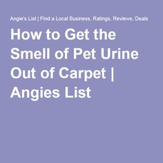 How to Get the Smell of Pet Urine Out of Carpet | Angies List