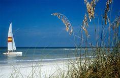 Treasure Island Beach in Tampa, Florida Need A Vacation, Vacation Places, Vacation Spots, Beach Vacations, Florida City, Tampa Florida, Florida Keys, Tampa Bay