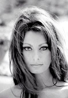 Sophia Loren by velma