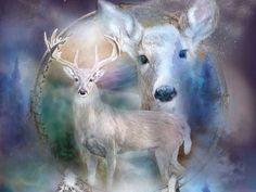 I got: Deer! What's Your Spirit Animal?