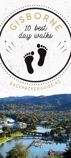 10 Gisborne Walks You Can't Miss - NZ Pocket Guide New Zealand Travel Guide Beach Road, Beach Walk, Gisborne New Zealand, Fitness Trail, New Zealand Travel Guide, Small Waterfall, Xmas Holidays, Picnic Area, Mural Painting